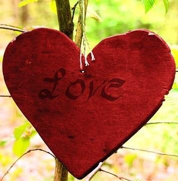 wooden-heart-331339_640