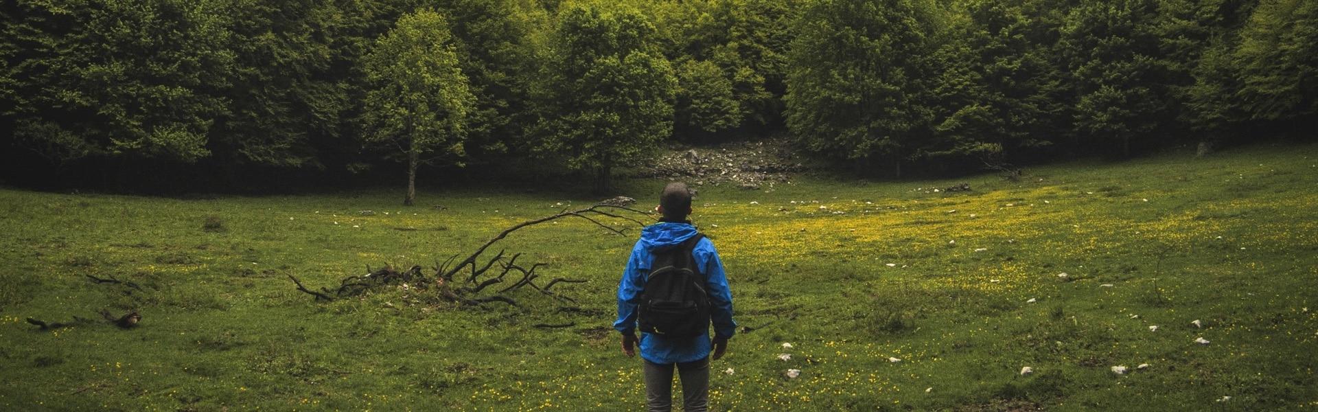Homme qui se balade en forêt